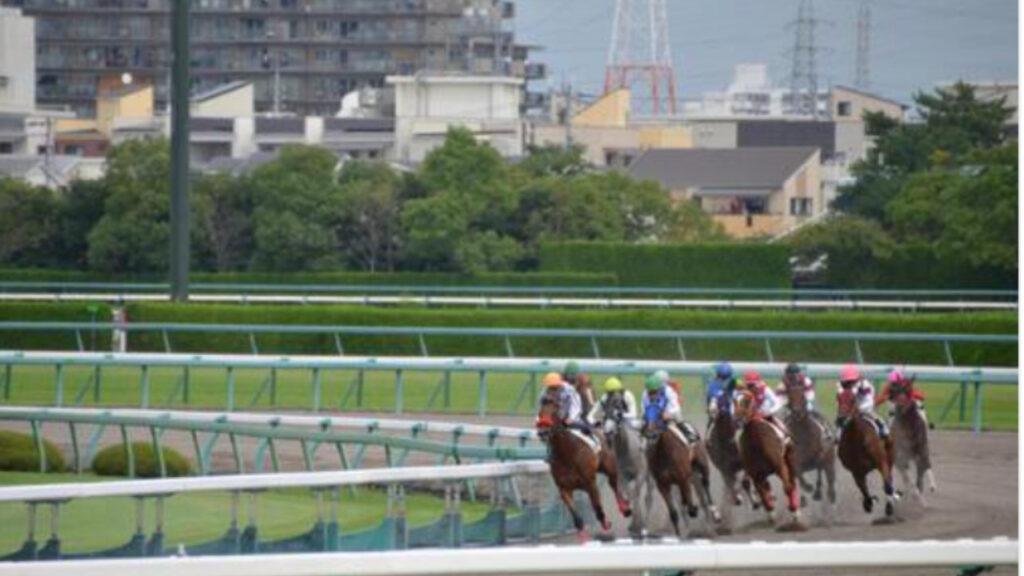 馬 性格 競馬