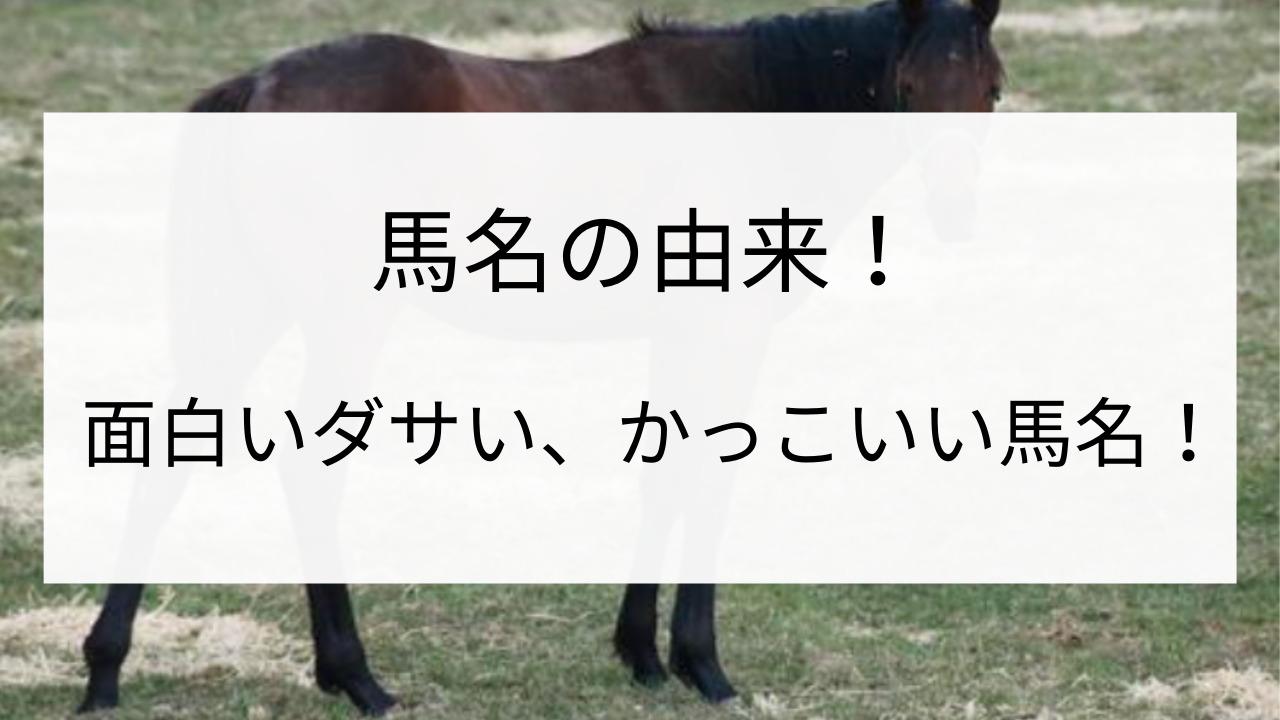 競走馬 名前 面白いダサい かっこいい